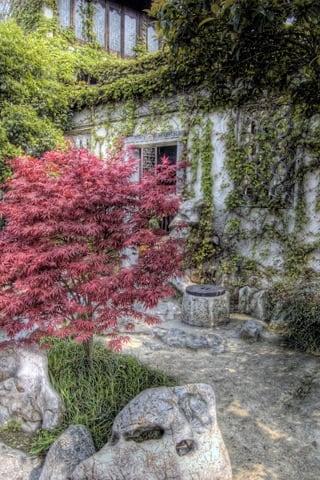 Beautiful HDR Garden iPhone Wallpaper